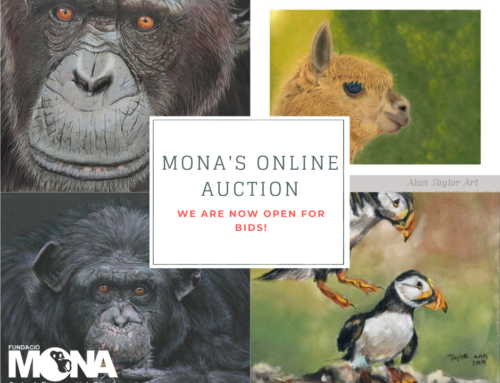 MONA's on-line winter auction