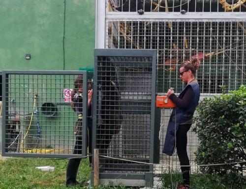 New veterinary annex