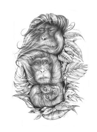daniela-carvalho